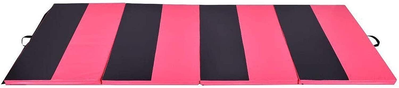 アウトドアスポーツアクセサリー 折りたたみタンブリングマットジムパッドエクササイズフィットネスフロアマット体操マット (色 : ピンク, サイズ : 300*120*5CM)