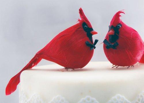 Paese Cardinale torta: rustico 'Sposo e Sposo Gay Love Birds Topper Per Torta Nuziale