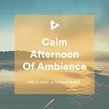Calm Afternoon Of Ambience
