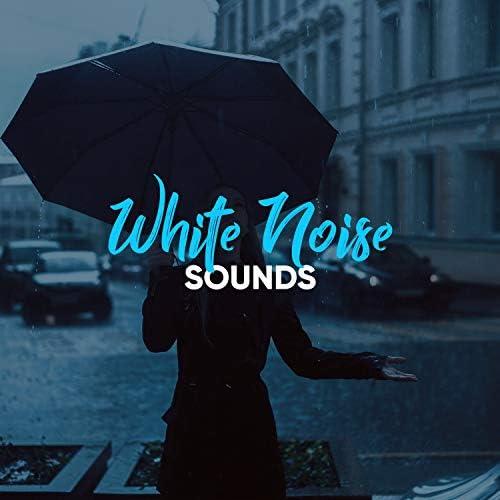 Sleep Ambience & Rain Sound Studio
