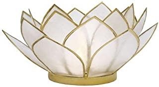 Natural Capiz Shell Lotus Tealight Holder