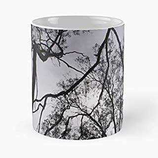 Trees Sky Nature Australia - Funny Gifts For Men And Women Gift Coffee Mug Tea Cup White 11 Oz.the Best Holidays.