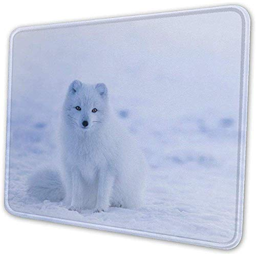Island Arctic Fox Tier Wildlife Winter Mauspad Pad einzigartige benutzerdefinierte Mousepad Computer-Tastatur große Gaming-Mauspats