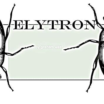 Elytron