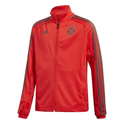 adidas Kinder 18/19 FC Bayern Training Jacket Trainingsjacke, red/Utility ivy, 176