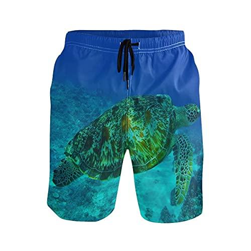136 Bañador de playa para hombre con diseño de tortugas oceánicas
