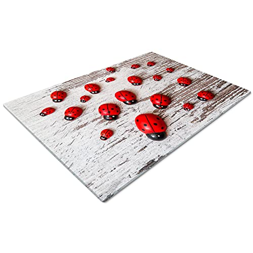 Glass Chopping Board   Kitchen Worktop Protector   Multifunctional Cutting Board   Work Top Savers   Kitchen Accessories   Extra Large   Ladybug Ladybird Red Green