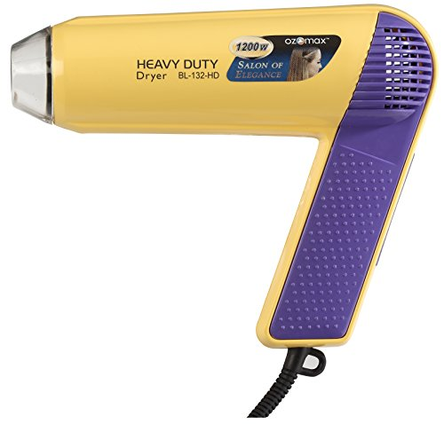 Ozomax Heavy Duty Hair Dryer