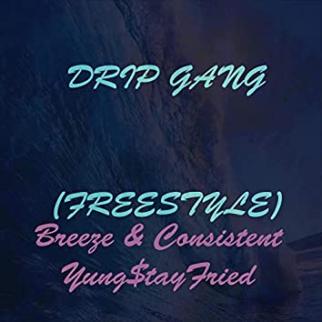 Drip Gang Freestyle (feat. Breeze & Consistent)