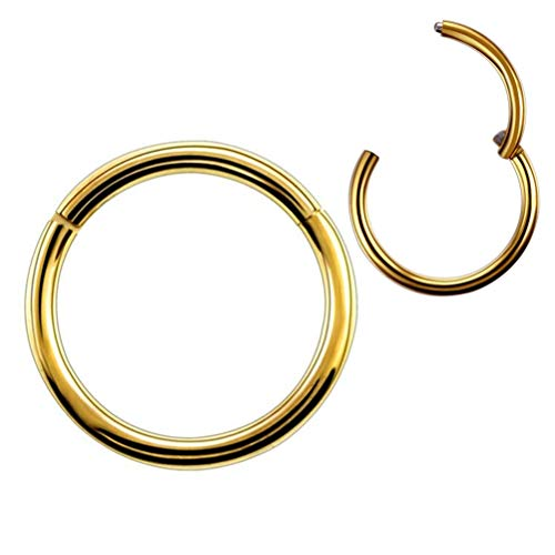 Formissky 16G 18G Segment Septum Hoop Nose Lip Ring Surgical Steel Tragus Cartilage Daith Earrings Piercing Jewelry Multicolor
