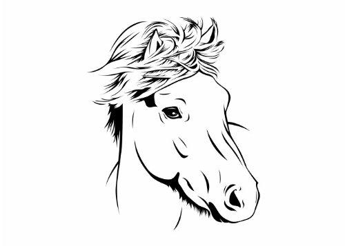 Wandtattooladen Wandtattoo - Pferdekopf 2 Größe:40x50cm Farbe: Schablone