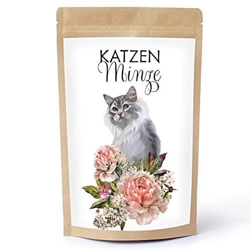 Heimatzauber Echte Katzenminze (getrocknet und geschnitten). Für Tee oder für die Herstellung von Katzenminze Tropfen BZW. Katzenminze Öl