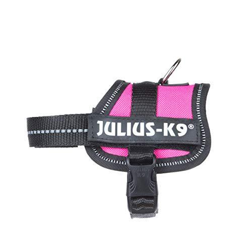 Julius-K9, 162DPN-BB1, K9-Powergeschirr, Größe: Baby 1, dunkelpink