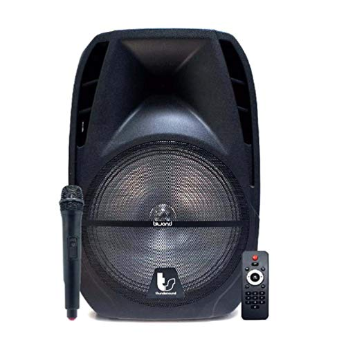 "Biwond Thundersound Altavoz Autoamplificado 400W TS12""(Bluetooth, USB/SD/AUX/Jack, Micrófono inalámbrico, RMS 200W, Radio, Rec) – Negro"