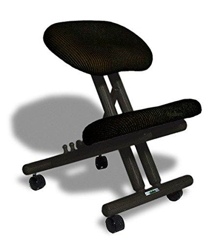 cinius Silla ergonómica Profesional Color Negro sin Respaldo 🔥