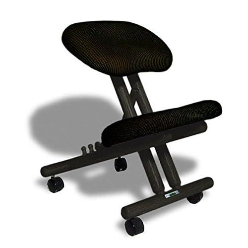 Cinius Silla ergonómica Profesional Color Negro sin Respaldo ...