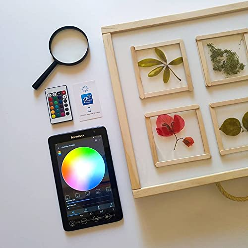 R-Crea Mesas de luz Montessori RGBW- 48x37x7 - Color Natural - Certificadas por la Universidad de Murcia