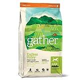 Petcurean Gather Endless Valley Vegan Recipe Dry Dog Food - 6 lb. Bag