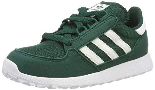 Adidas Forest Grove C, Zapatillas de Gimnasia Unisex Niños, Verde (Collegiate Green/FTWR White/Collegiate Green Collegiate Green/FTWR White/Collegiate Green), 30 EU