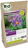 Zistrosenkraut Bio 250g - Cistus Incanus - Zistrosentee (Bade Tee) - Vegan und ökologisch naturbelassen - geschnitten Lose Blätter - Premium Qualität