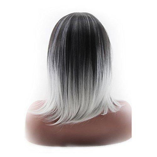 Frcolor Ombre 2 tonos hombro sintético alta temperatura longitud fibra 3/7 parte recta de la mujer Full pelucas / cabello oscuro raíces (gris negro + luz)