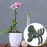 Omabeta Schöne Pflanzenklammer, 100 Stück, Befestigungsclips für Orchideenstiel (keine...