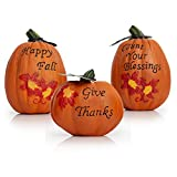 Besti Fall Harvest Pumpkin Decorations (3-Piece Set) Inspirational Thanksgiving and Autumn Tabletop Home Decor | Rustic, Country Decorative Props | Kitchen, Living Room