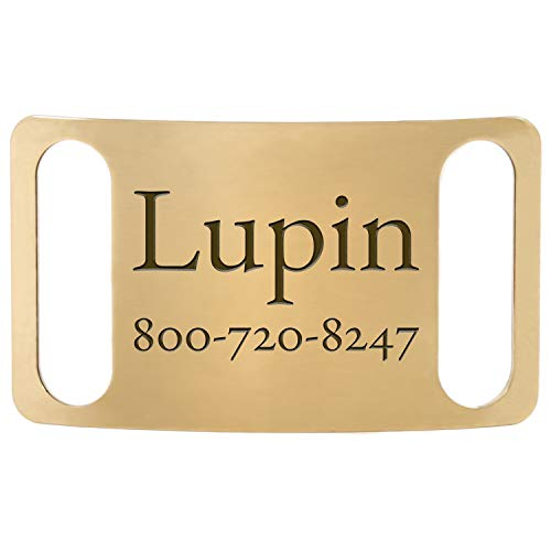 DogIDs Personalized ScruffTag Slide-On Nameplate Dog Identification Tag, Custom Laser Engraved Single Sided ID Tag - Brass, Medium, 3/4 in