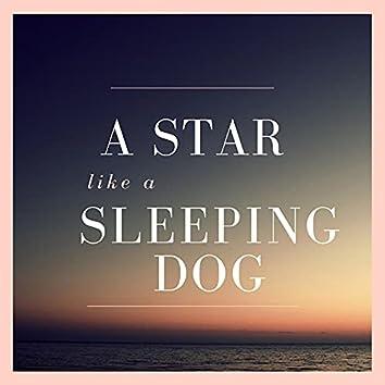 A STAR like a SLEEPING DOG