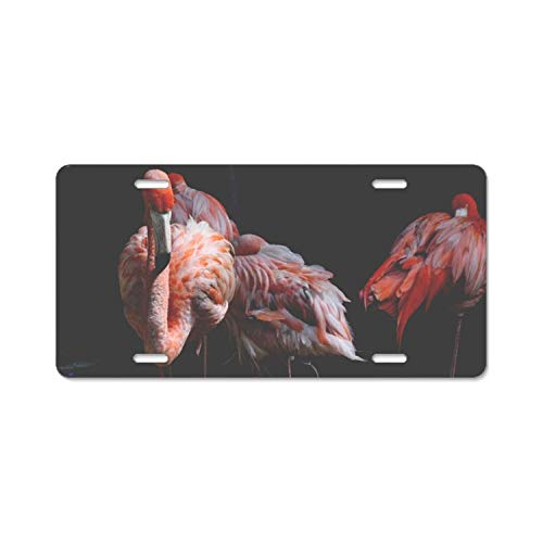 wanshangcheng Car License Plate Frame,Anima Flamingos Alumina License Plate Covers