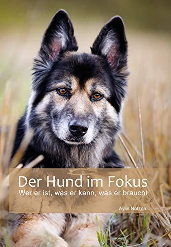 Der Hund im Fokus: Wer er ist, was er kann, was er braucht