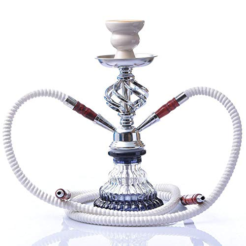 "WYYHAA Portable Hookah Set, 11.4"" Best Original Hookah with Stable Glass Vase Washable Bowl 2 Hose Better Filtration with Diffuser"