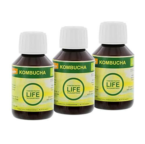 Thylbert 3 Botol 100 ML Budaya Terkonsentrasi Minum Kombucha Organik tanpa Gula, Cocok untuk: Minuman 1 Liter Kombucha.