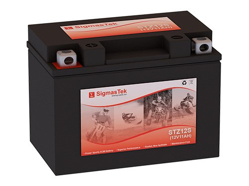 YTZ12S Motorcycle Battery (Replacement)