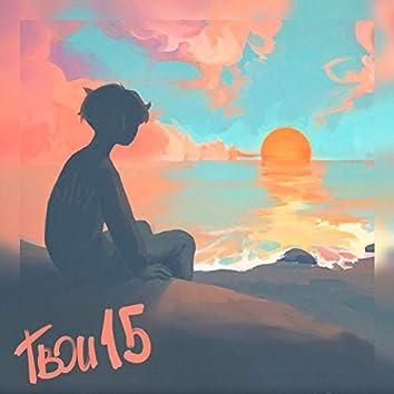 Твои 15