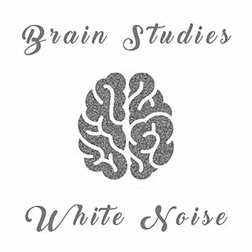 Brain Studies White Noise