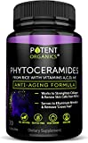 Phytoceramides Capsules 100 mg – The Most Potent Beauty Complex with Natural...