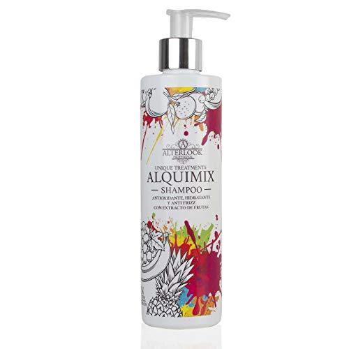 Champú Antiencrespamiento Hidratante - Antifrizz Antioxidante Sin Sulfatos Sin Parabenos - Aceites Naturales y Frutas - 300ml Alquimix