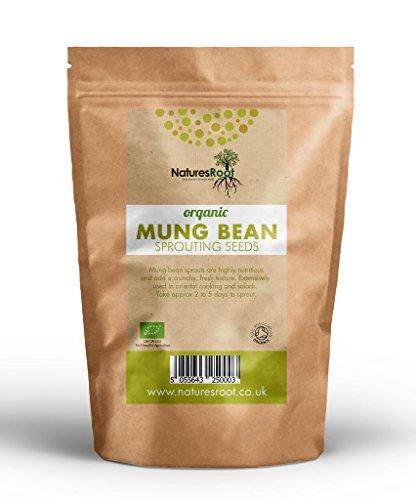 Natures Root Bio Mungbohne Sprießen Samen - Superfood | Nicht GVO | Microgreen Sprouts | Gartenpflanzen | Gemüsegarten (500g)