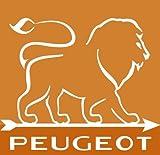 Peugeot Set PARIS Pfeffermühle + Salzmühle schwarz / Mohn rot lackiert 18 cm - 4