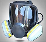 ZYC 7 in 1 Gas Mask Full Face Facepiece Respirator Same for Gas Respirator with Carbon Filters Painting Pesticide,with 6002