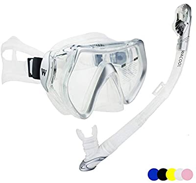 WACOOL Snorkeling Package Set for Adults, Anti-Fog Coated Glass Diving Mask, Snorkel with Silicon Mouth Piece,Purge Valve and Anti-Splash Guard. (Silver)