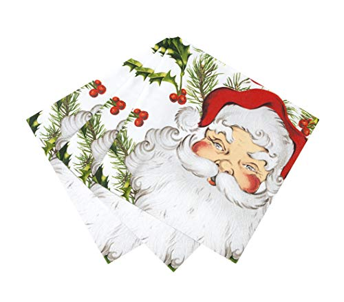 "Talking Tables Botanical Santa Napkin 13"" for Christmas Parties and Dinners, (20 Pack)"