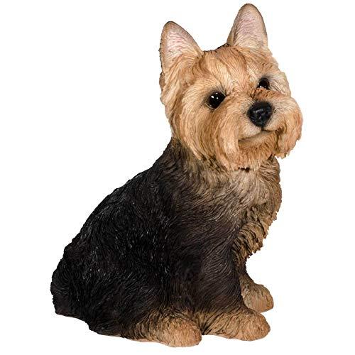 SIDCO Hund Deko Figur Yorkshire Terrier Hundefigur Skulptur Gartenfigur lebensecht