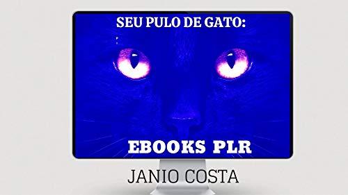 SEU PULO DE GATO: : EBOOKS PLR. (Portuguese Edition)
