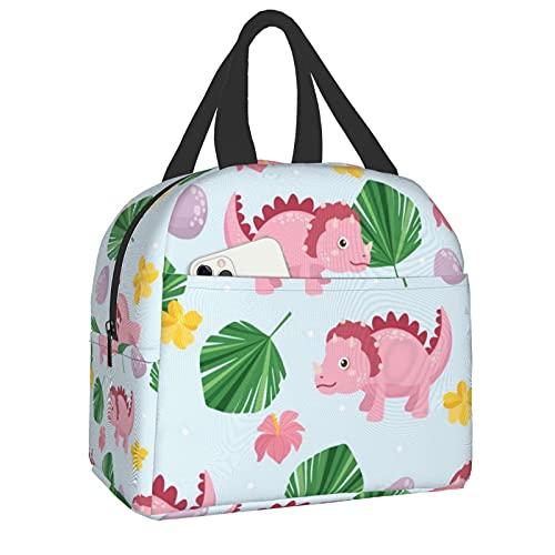 Bolsas de almuerzo aisladas, linda hoja de dinosaurios para mujeres, trabajo, escuela, niños, estudiantes, embalado almuerzo, sándwich, comida fría, bolsa de nevera