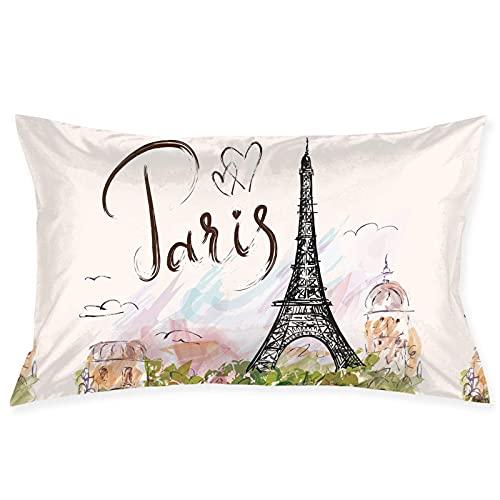 QUEMIN Torre Eiffel Paris Throw Pillow Cover with Zipper Funda de Almohada Rectangular Decorativa Fundas de cojín para sofá de casa y sofá Cama de 20 x 30 Pulgadas