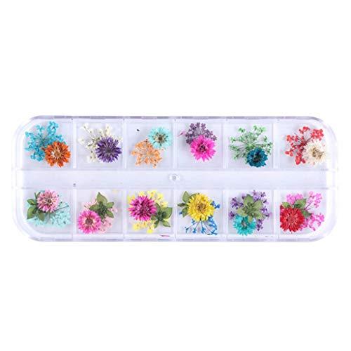 12 Grid/Box Kristall Epoxy Füllstoff Trockene Blume Handgemachte Blumen DIY Handwerk Silikon Formen UV Harz Füllstoff