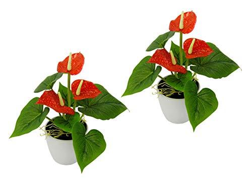 Flair Flower Mini Anthurie im Topf, 2er Set, Rot, Kunst-Blume, Flamingo, Künstliche Pflanze, Polyester, Kunststoff, 20 cm hoch, 16 cm breit