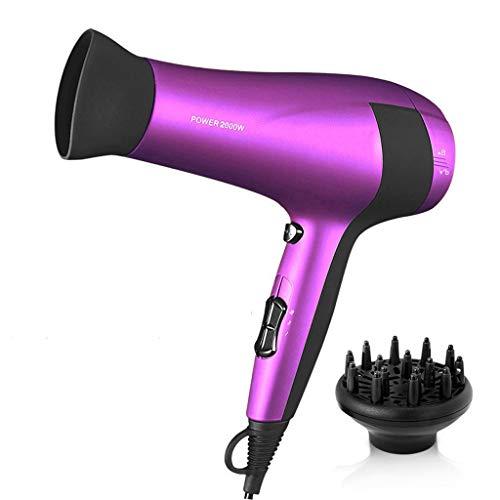 Haar Professionele Ionische Droger Met Salon Haardroger,2 Snelheid 3 Warmte Koele Knop Met Concentrator Mondstuk, 2000 W (Purple)